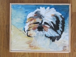 Missy-The-Shih-Tzu